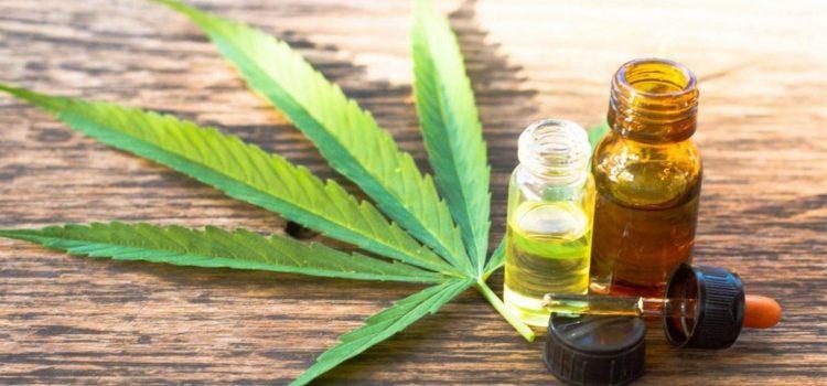 La presidenta del Colegio de Farmacéuticos Bonaerense destacó la medida que les permite vender aceite de cannabis