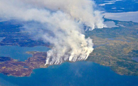 Manuel Jaramillo de Fundación Vida Silvestre explicó las claves de los incendios en el Amazonas